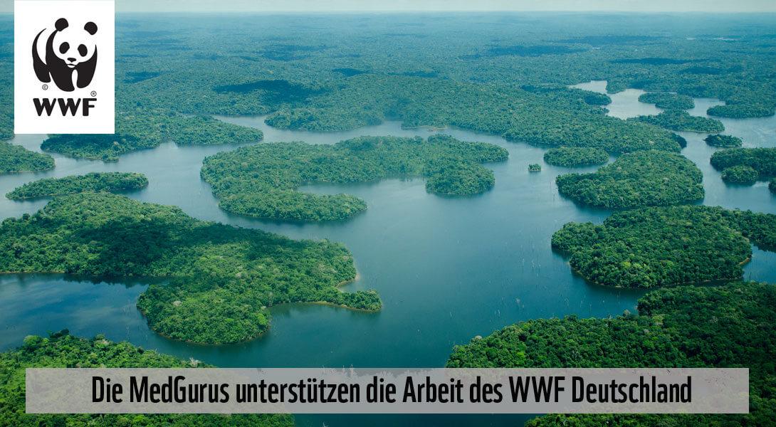 Bild des Amazonas vom WWF Deutschland